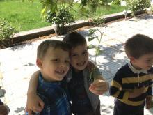 Kinder mit Setzling